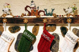 12 Days of Pitching In -DAY 9 – Waste free stocking stuffers